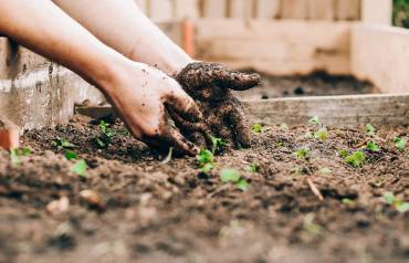 Improving-Soil-for-Gardening-15th-Aug